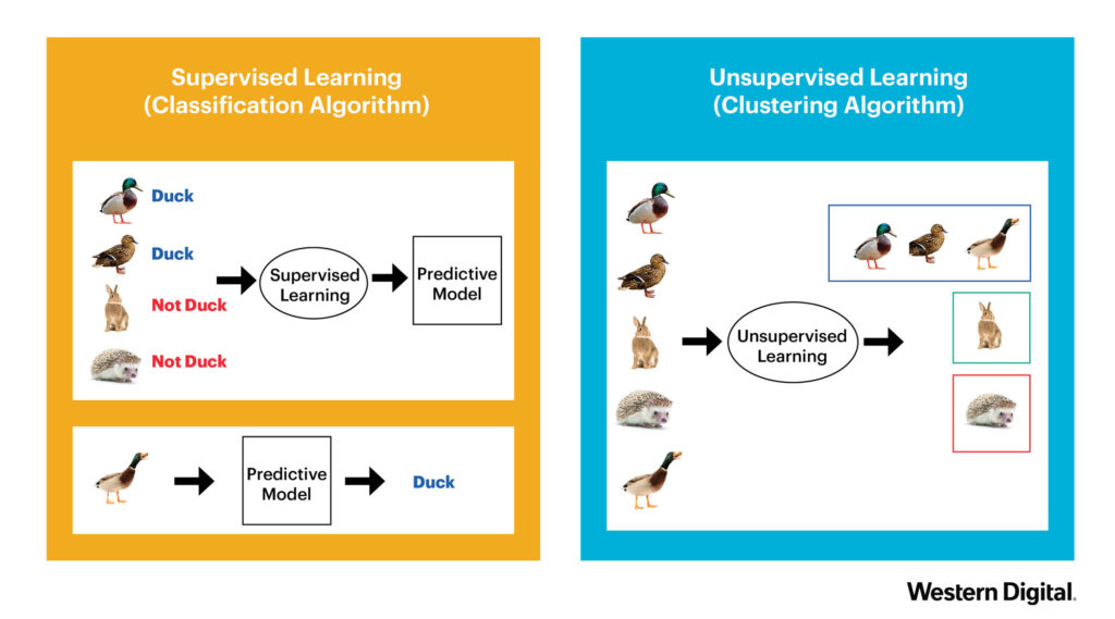 supervised vs, unsupervised machine learning