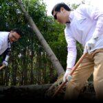 Western Digital volunteers planting trees in Shanghai to help the environment