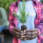 Woman holding tree sapling for Earth Day volunteering.